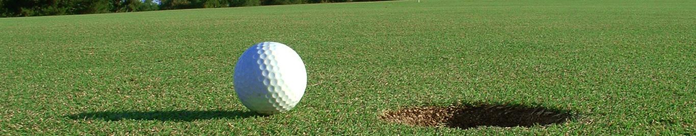1366x268_golf
